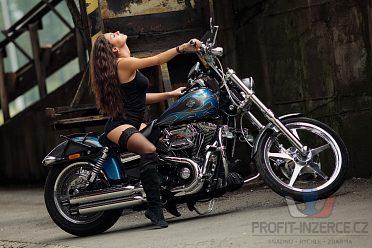 Harley Davidson Dyna Wide Glide LE