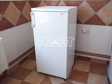 Chladnice BOSCH objem 205 litrů