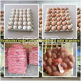 Venkovská vejce z volného výběhu