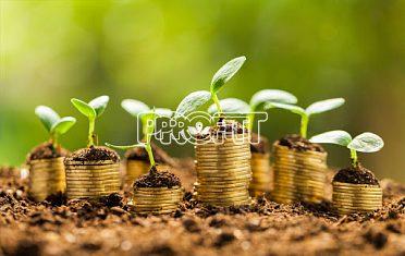 Nebankovní půjčka - bez poplatku