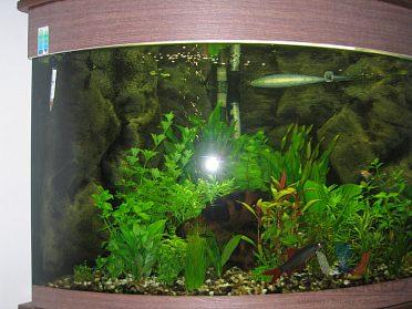 Rohové akvárium