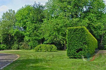 Údržba zahrad a pozemků