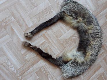 Kožešinový límec liška