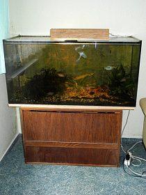 prodej kompletního akvarijního setu.
