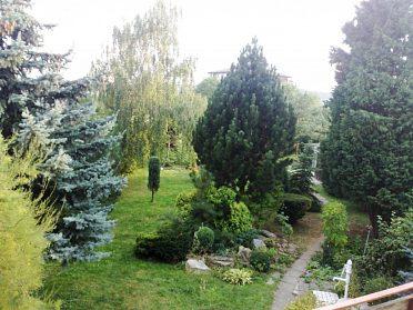 Pronájem bytu 1+kk v Olomouci